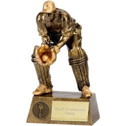 Pinnacle7 Wicket Keeper Cricket